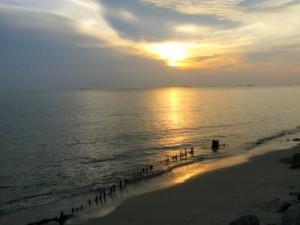 Carey Island Selangor