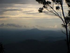 Gunung Belumut Recreational Forest summit view