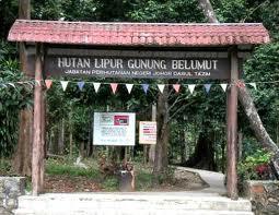 Gunung Belumut Recreational Forest