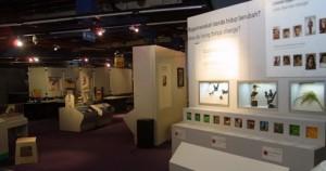 Biomedical Museum Specimen Displays