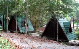 ulu bendul recreational forest camping