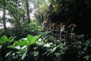 Kinabalu Park adventure tour