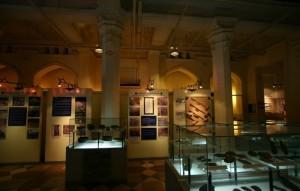 National History Museum display
