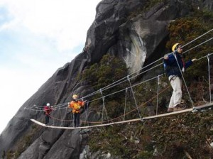 Mountain Torq Via Ferrata bridge