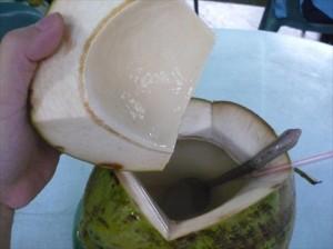 Tanjung Batu Beach coconut