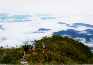 Mount Tahan summit