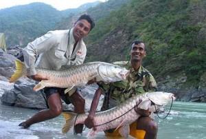Taman Negara fishing challenge