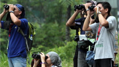 Pahang International Bird Race