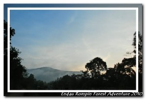 Kampung Peta surrounding