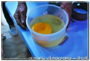 Ostrich farm open egg demo