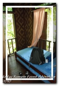 endau rompin national park chalet room
