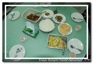 endau rompin national park dinner