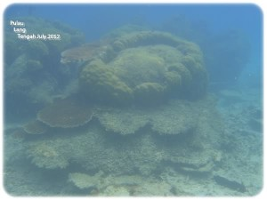 2nd Snorkeling 3