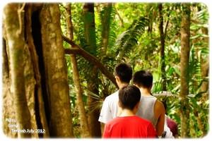 Jungle Trekking 4