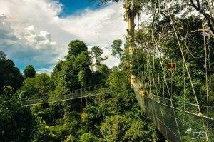 Kuala Koh National Park