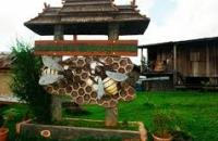 Gombizau Honey Bee Farm , Kudat