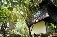 Kawang Forest Centre , Kinarut / Papar