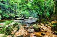 Lentang Forest Recreational Park