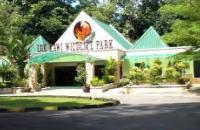 Lok Kawi Wildlife Park , Kota Kinabalu
