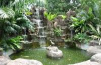Mini Bird Park