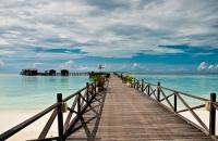 Pom Pom Island , Semporna