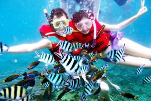 Snorkeling in Redang Marine Park