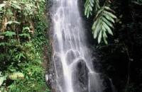 Sorinsim Waterfall , Kota Marudu