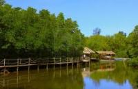 Borneo Kellybays Tuaran