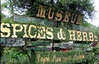 Nasuha herbs and spices paradise