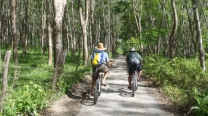 Langkawi Half-Day Cycling Tour
