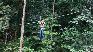 airtrek paralel in langkawi canopy tour