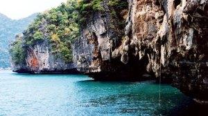 mangrove tour langkawi pic