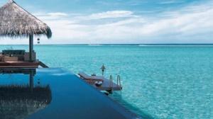 vivanta sea n pool view