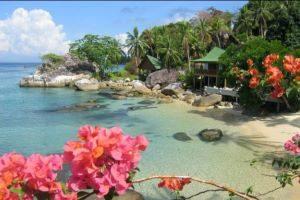 Tioman Minang Cove Resort