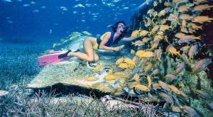 Perhentian-snorkeling-tour