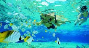 Tioman-Snorkeling-Tour