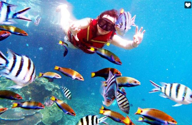 Snorkeling in Redang