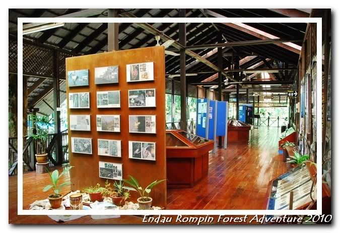 endau rompin national park gallery