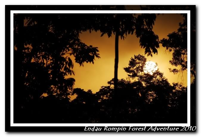 endau rompin national park sunrise