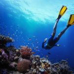 6 Best Perhentian Resorts for Learning to Dive (with Dive Centres)